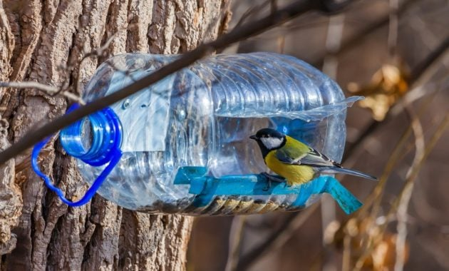 Tempat pakan burung dari botol plastik